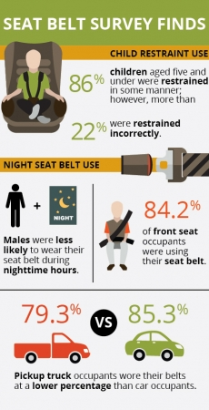 Texas Children and Nighttime Drivers/Passengers at Higher Risk Seat Belt Survey Finds